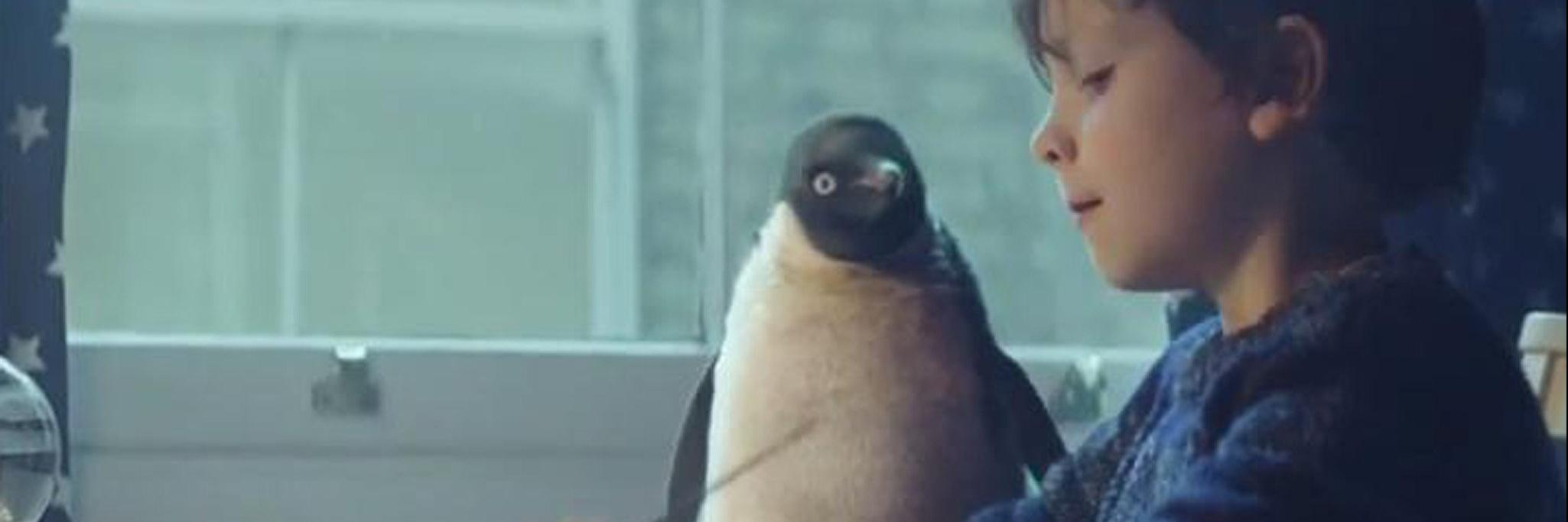 John Lewis Christmas Advert 2019.Why John Lewis Monty The Penguin Christmas Campaign Was