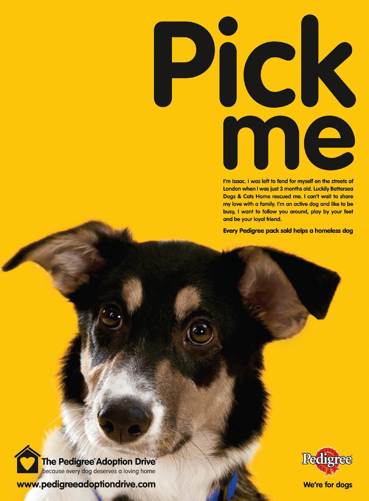 Pedigree Dog Food Advert
